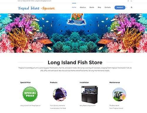 推广Fish Store Long Island排名第一,客户流量暴增